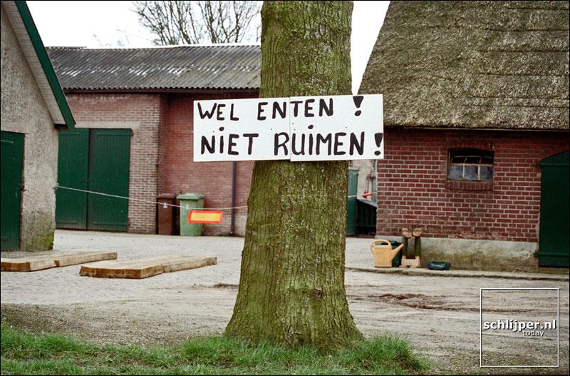 Nederland, Kootwijkerbroek, 31 maart 2001.