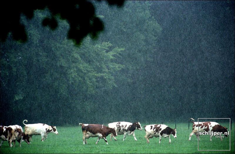Nederland, Meerssen, 17 juni 2001.