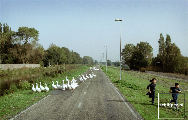 Nederland, Amsterdam, 13 oktober 2001.