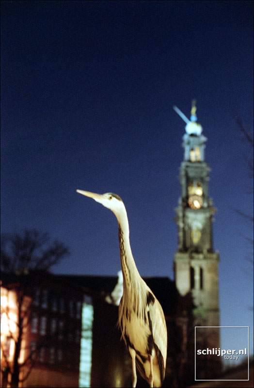 Nederland, Amsterdam, 8 december 2001.
