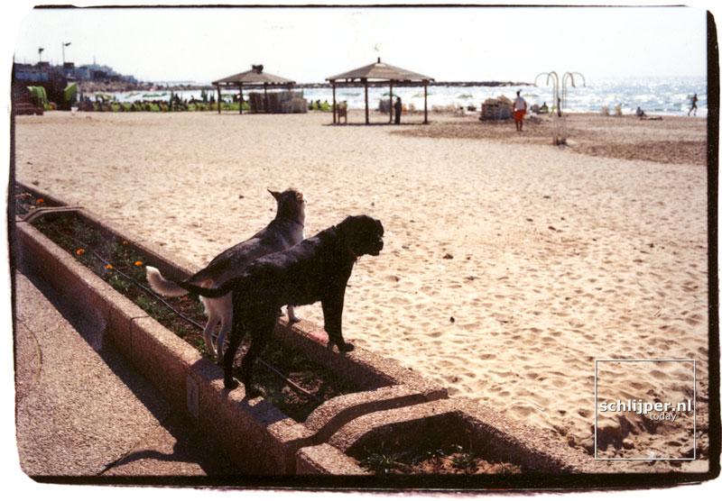 Israel, Tel Aviv, 15 maart 2002