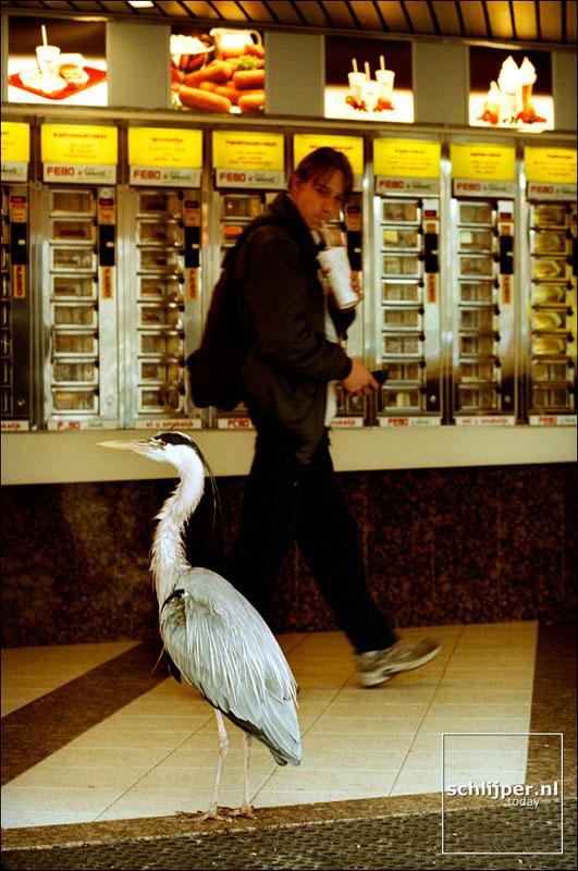 Nederland, Amsterdam, 17 april 2002
