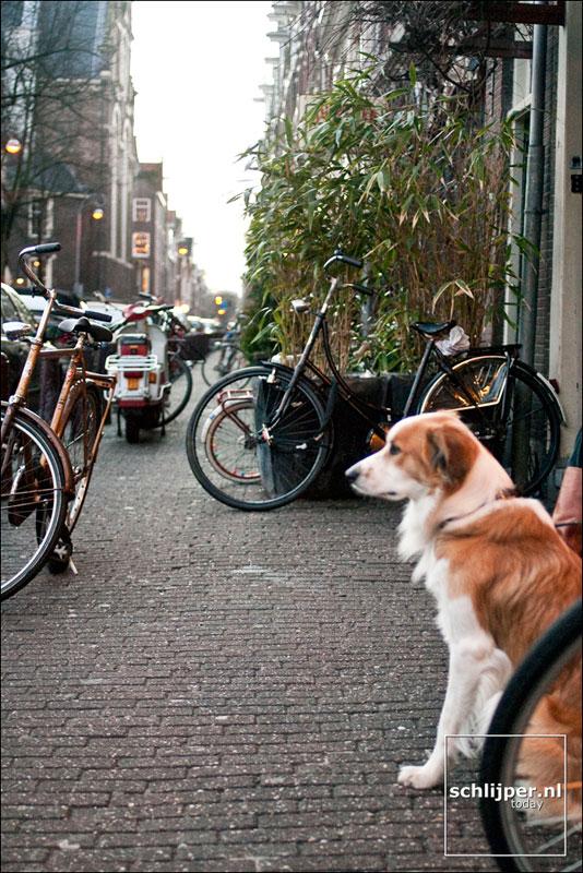 Nederland, Amsterdam, 24 januari 2004