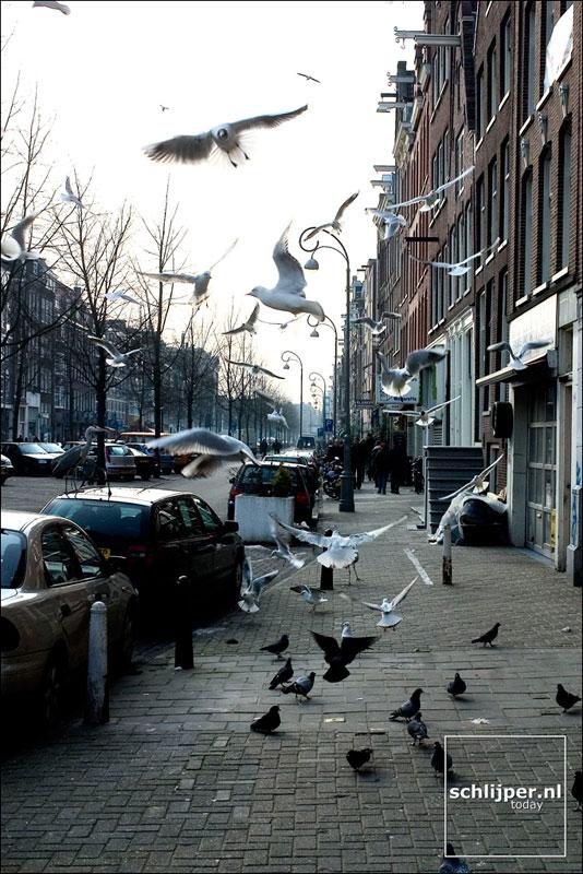 Nederland, Amsterdam, 29 februari 2004