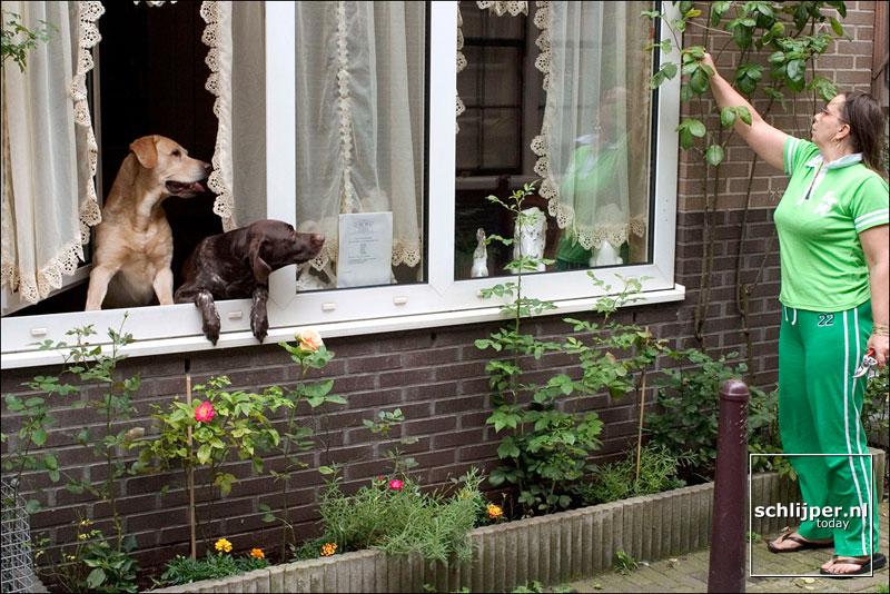 Nederland, Amsterdam, 31 juli 2004