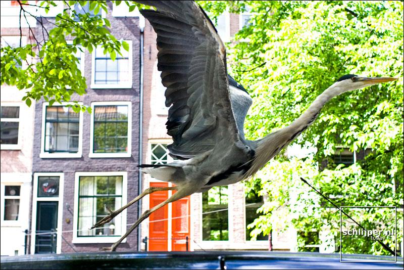 Nederland, Amsterdam, 13 juni 2005