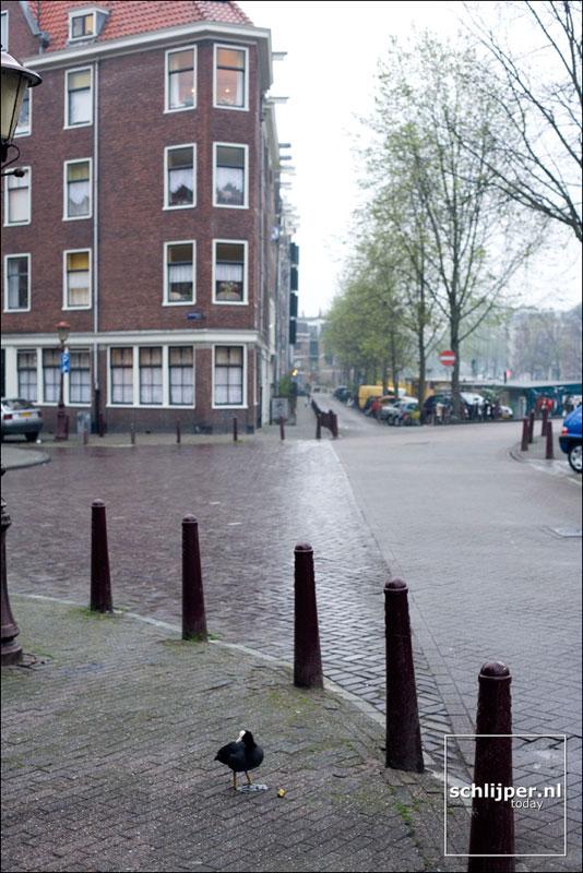 Nederland, Amsterdam, 23 april 2006