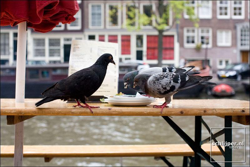 Nederland, Amsterdam, 2 september 2007