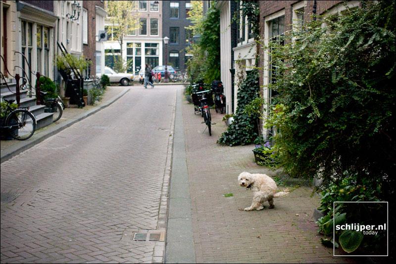 Nederland, Amsterdam, 27 oktober 2007