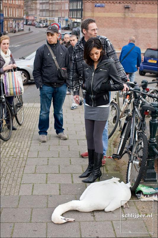Nederland, Amsterdam, 5 november 2007