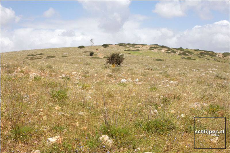 Israel, Gilbo'a, 15 april 2009