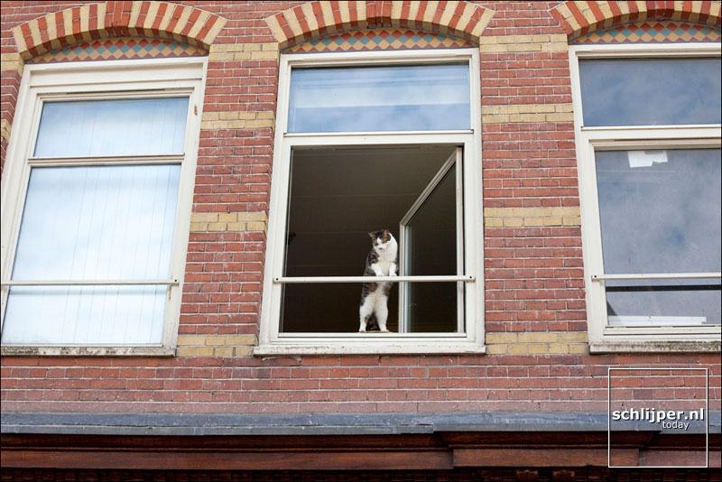 Nederland, Amsterdam, 1 augustus 2009