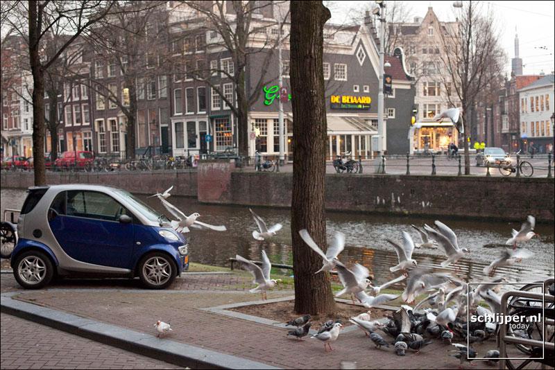 Nederland, Amsterdam, 2 december 2009