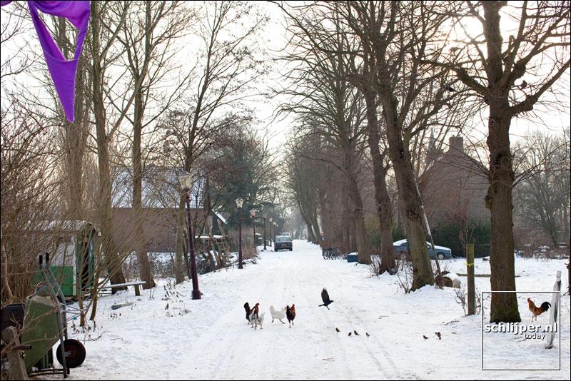 Nederland, Ruigoord, 14 januari 2010