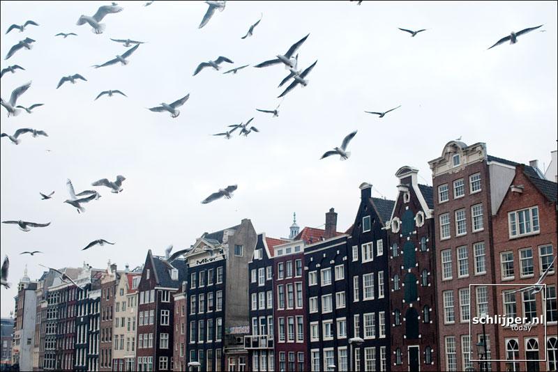 Nederland, Amsterdam, 27 november 2010