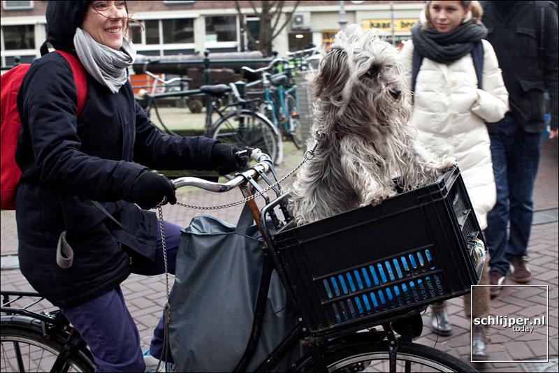 Nederland, Amsterdam, 5 februari 2011