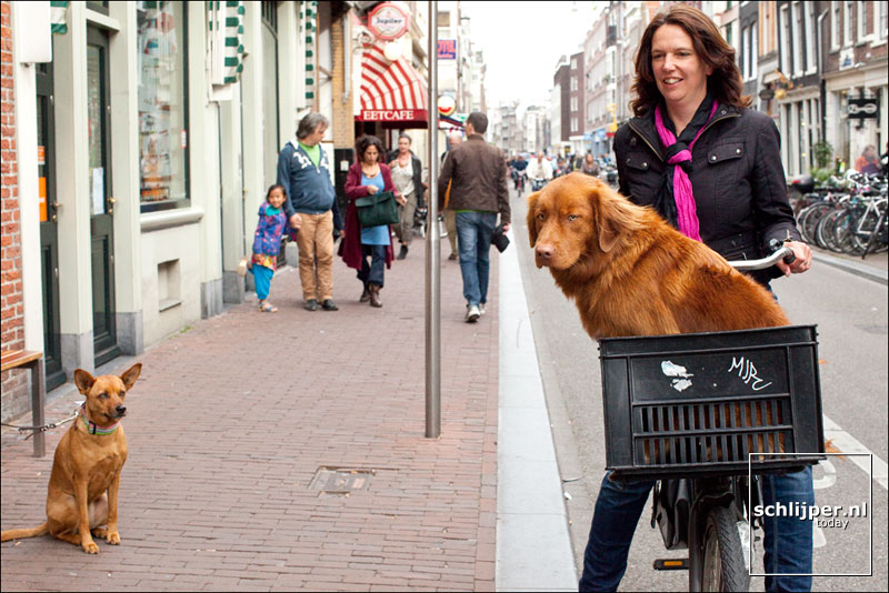 Nederland, Amsterdam, 14 mei 2011