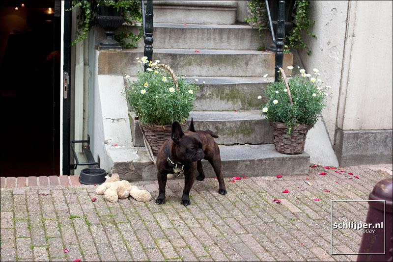 Nederland, Amsterdam, 17 juni 2011