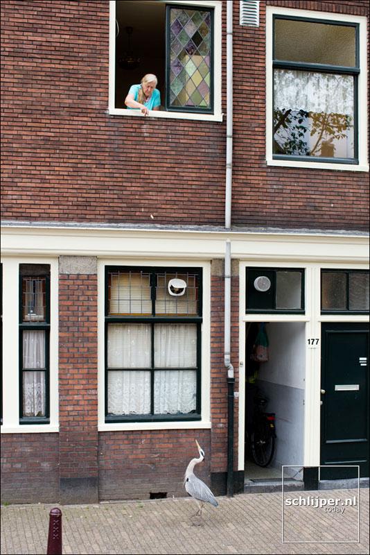 Nederland, Amsterdam, 13 juni 2013