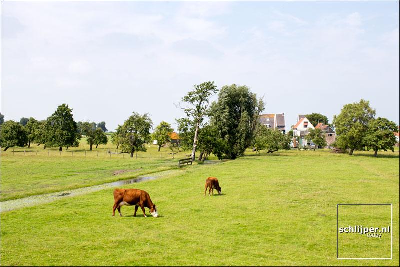 Nederland, Marken, 4 juli 2013