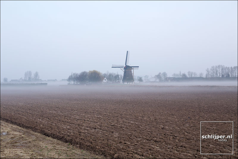 Nederland, Hank, 8 maart 2014