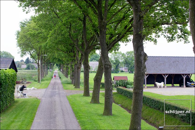 Nederland, Ruinen, 21 mei 2014