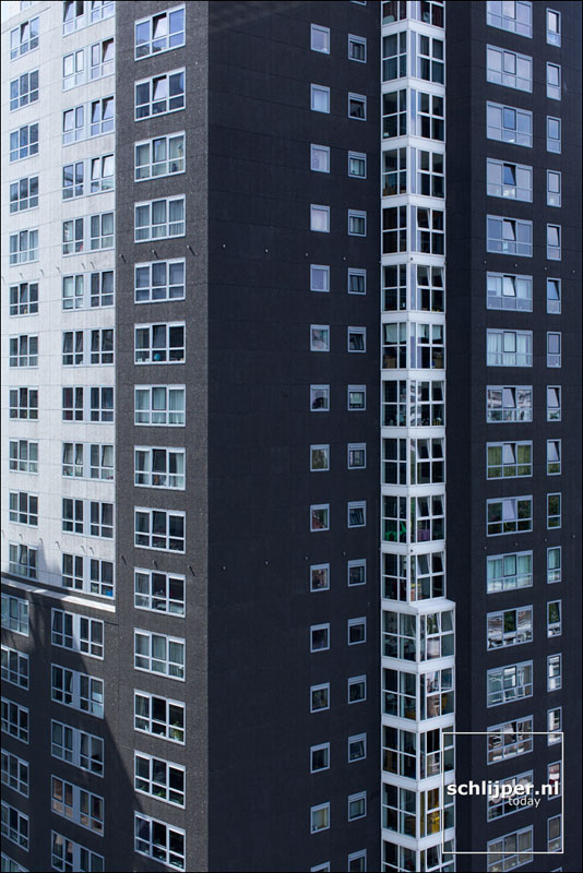 Nederland, Rotterdam, 24 juli 2014