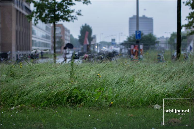 Nederland, Amsterdam, 20 juni 2016