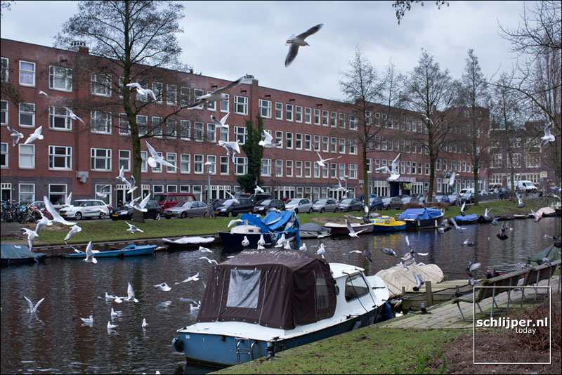 Nederland, Amsterdam, 3 februari 2017