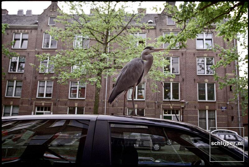 Nederland, Amsterdam, 29 mei 2001.