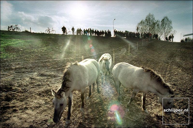 Nederland, Ooij, 2 november 2001.