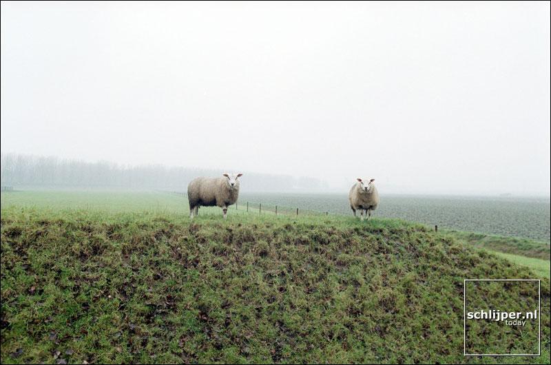 Nederland, Hoofddorp, 24 november 2001.