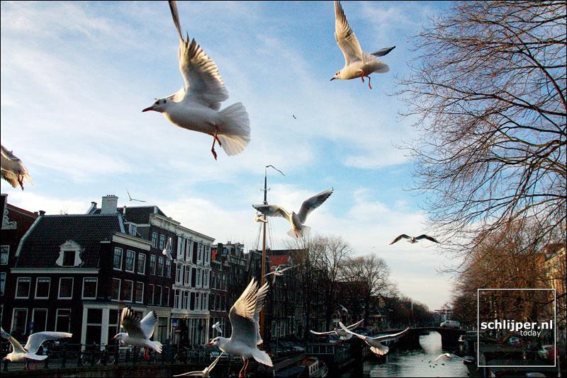 Nederland, Amsterdam, 24 januari 2003