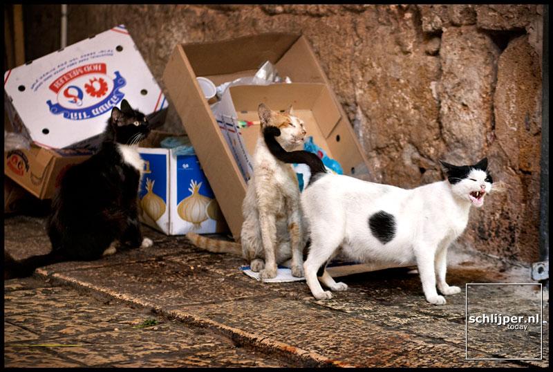Israel, Akko, 14 juli 2003