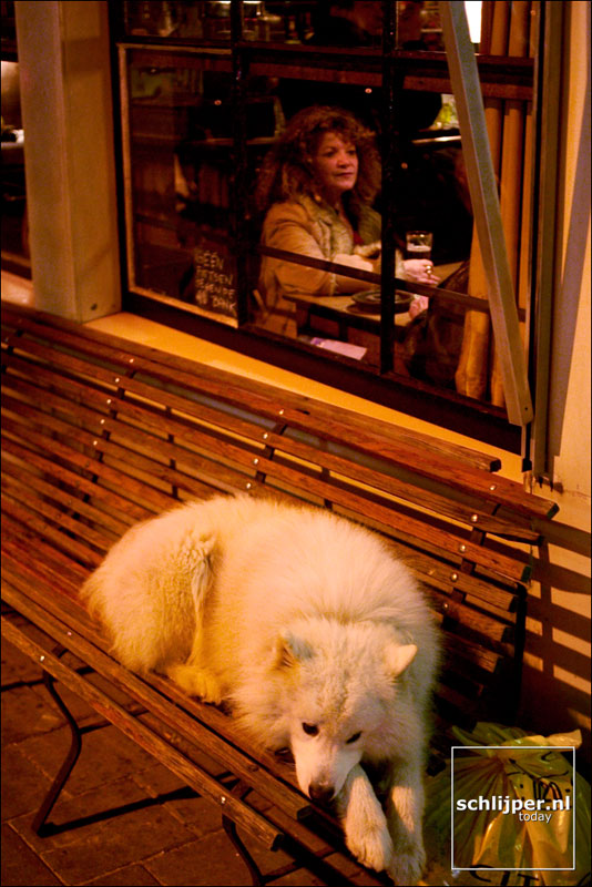 Nederland, Amsterdam, 14 februari 2004