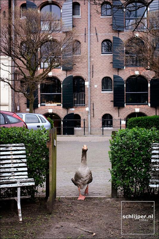 Nederland, Amsterdam, 3 april 2004