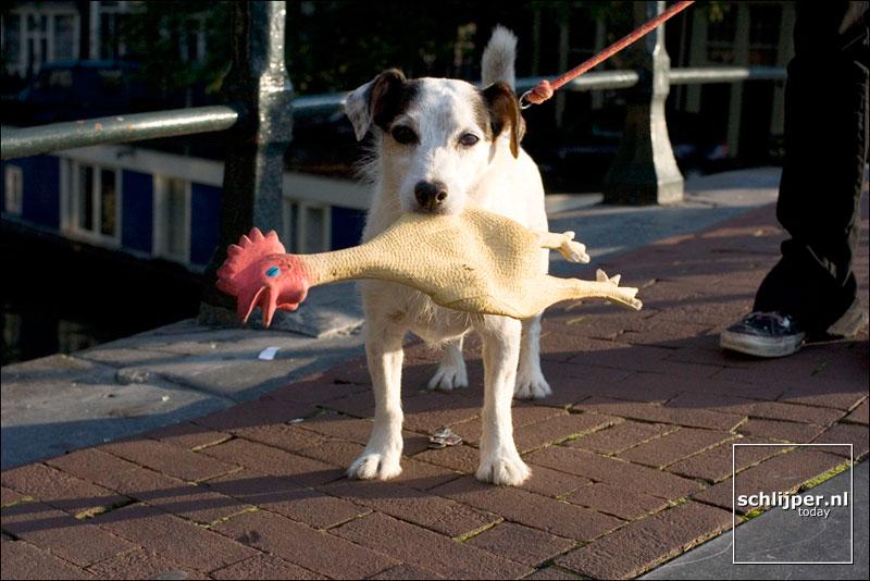 Nederland, Amsterdam, 20 september 2005