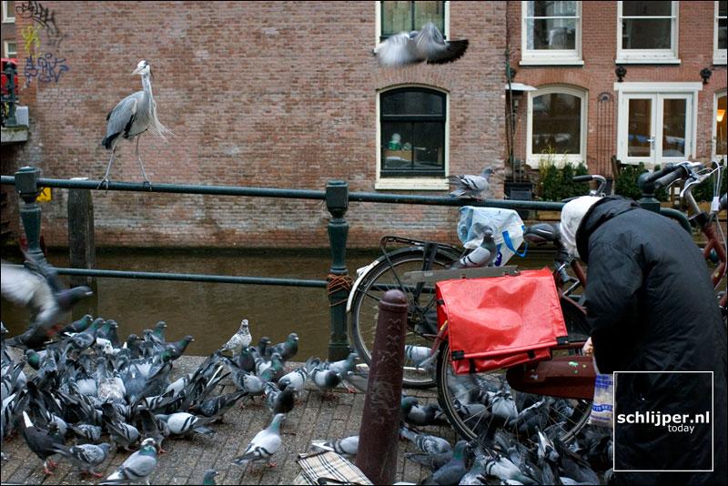 Nederland, Amsterdam, 5 december 2005