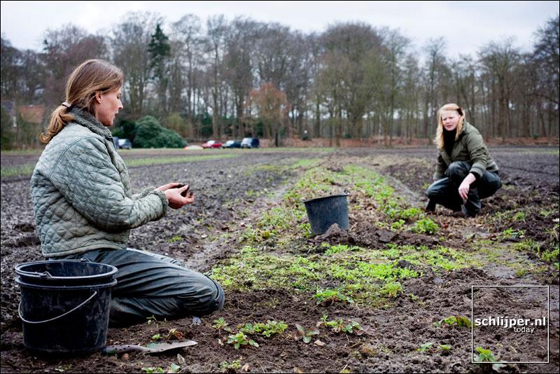Nederland, 's Graveland, 13 april 2006