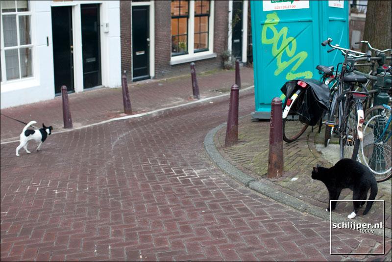 Nederland, Amsterdam, 1 maart 2009