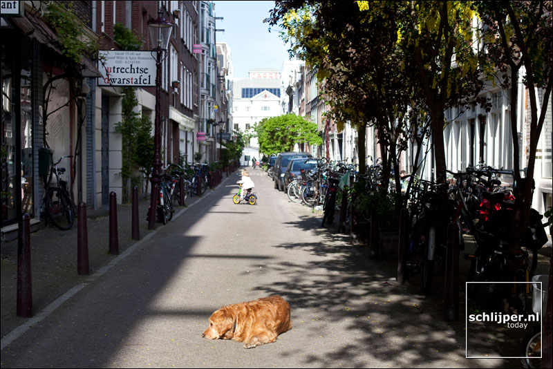 Nederland, Amsterdam, 11 mei 2009
