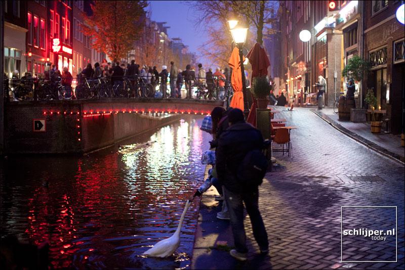 Nederland, Amsterdam, 17 november 2012