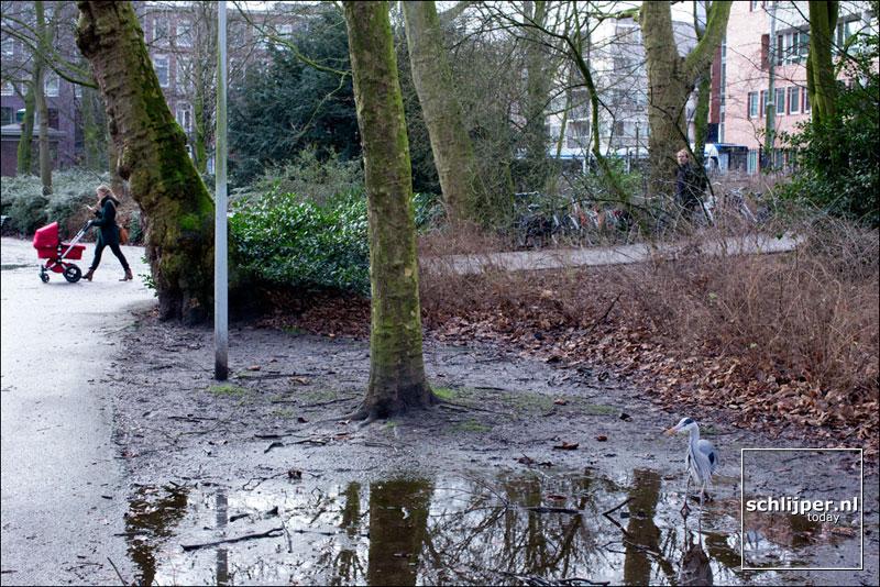 Nederland, Amsterdam, 14 februari 2014