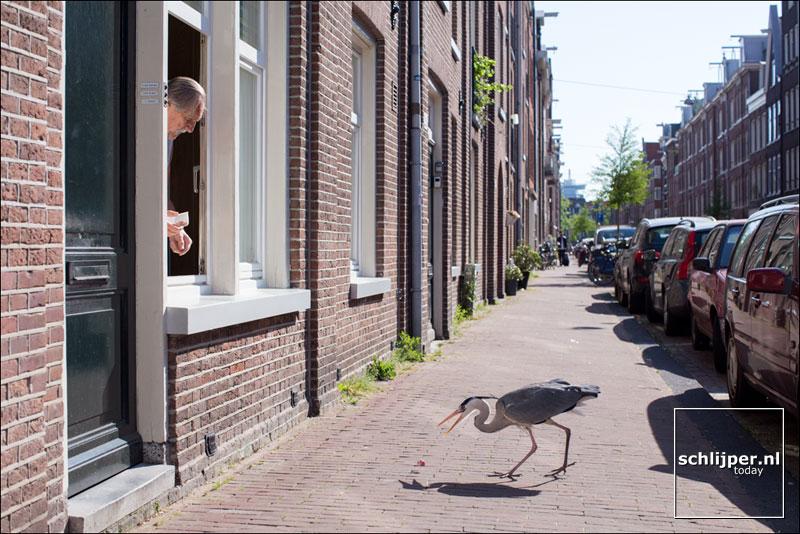 Nederland, Amsterdam, 13 mei 2016