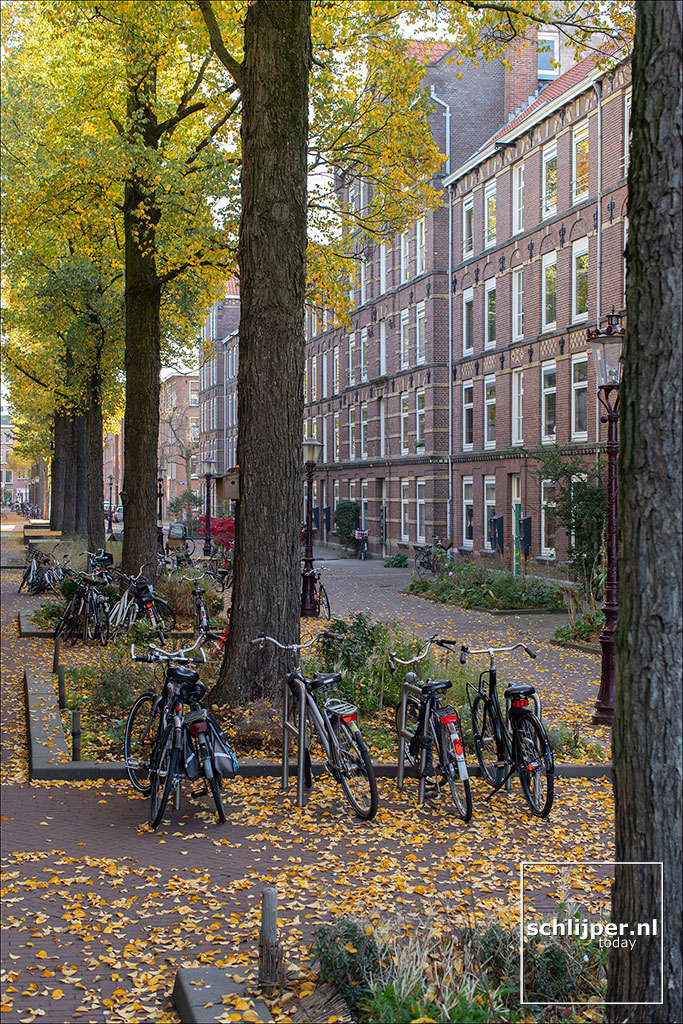 Nederland, Amsterdam, 17 november 2018