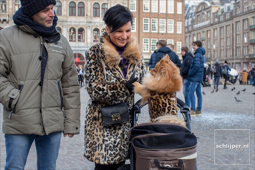The Netherlands, Amsterdam, 12 februari 2019