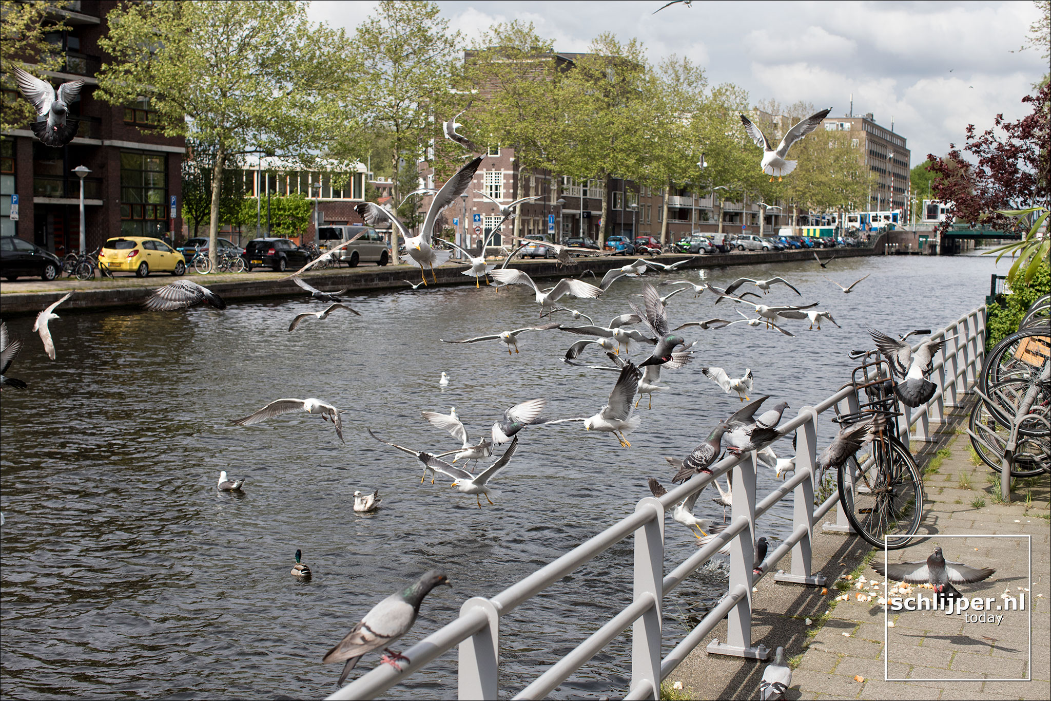 The Netherlands, Amsterdam, 28 april 2019
