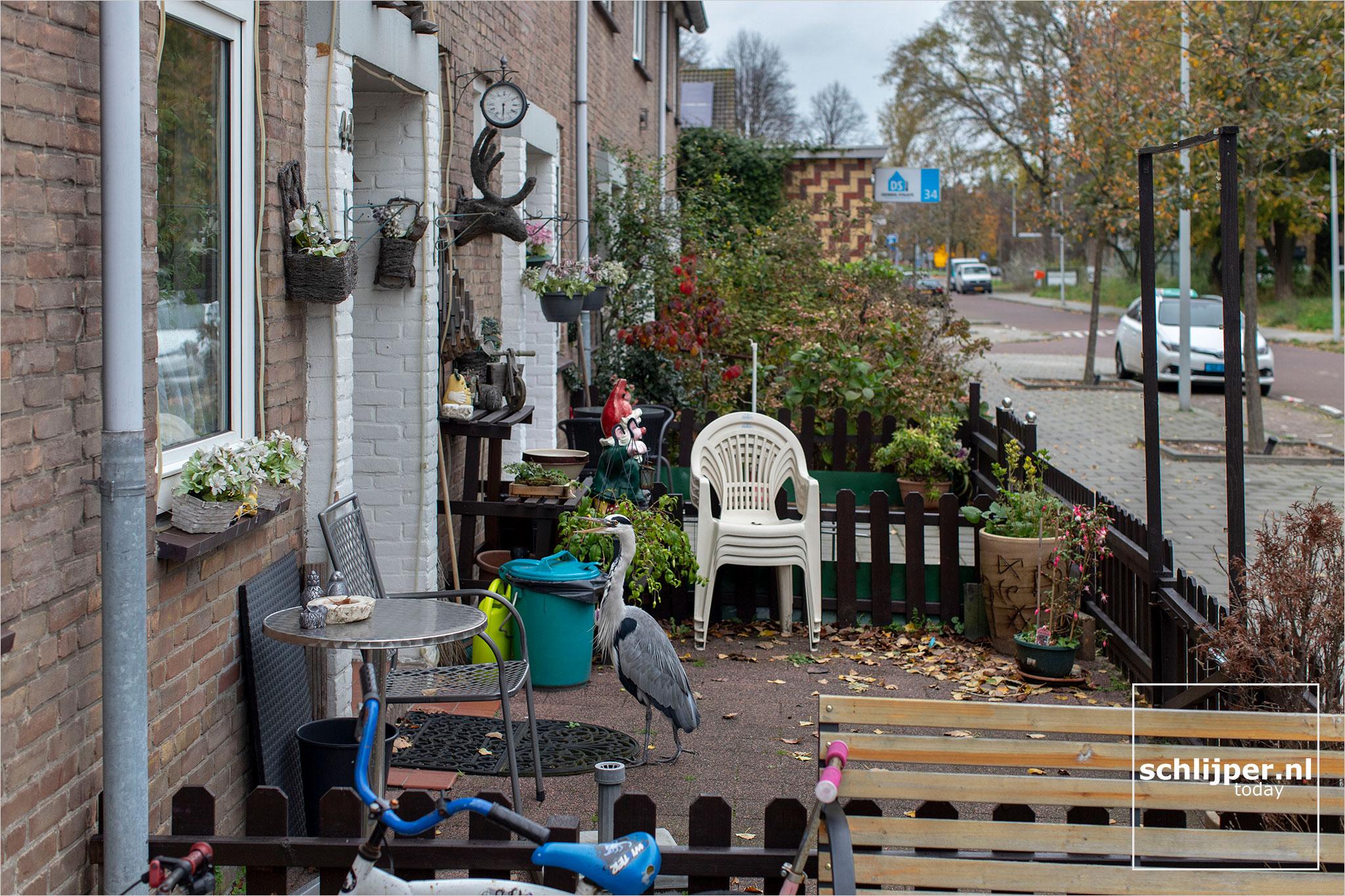 Nederland, Amsterdam, 29 oktober 2020
