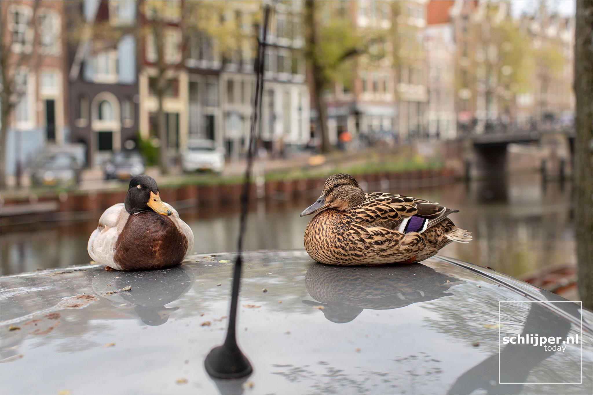 The Netherlands, Amsterdam, 6 mei 2021
