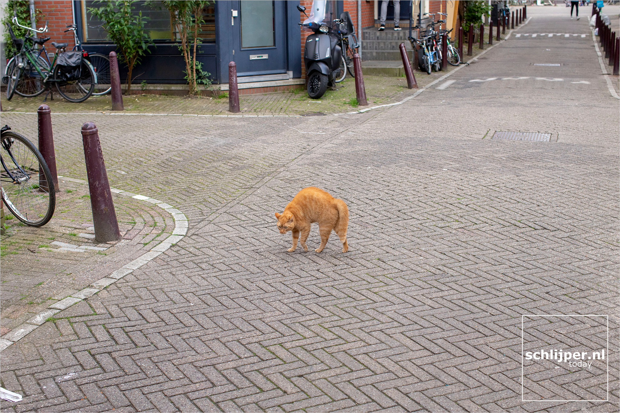 The Netherlands, Amsterdam, 17 mei 2021